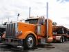 Orange Pete (1024x683)
